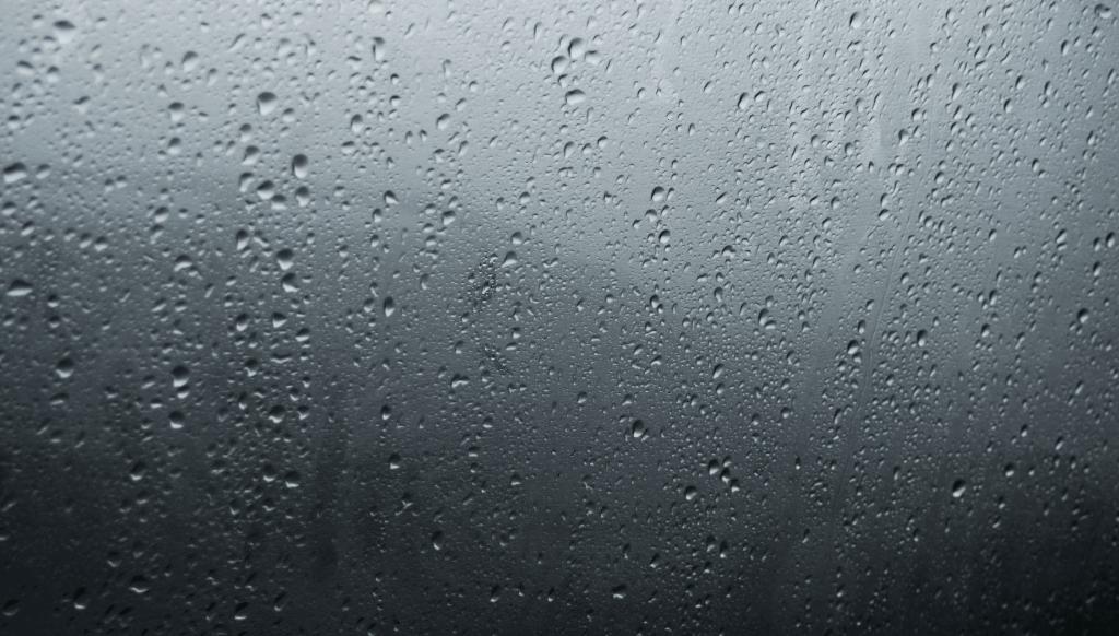 Ako riešiť problémy s vlhkosťou